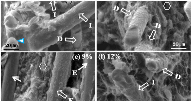 Enhancement of the Mechanical Properties of Basalt Fiber-Wood-Plastic Composites via Maleic Anhydride Grafted High-Density Polyethylene