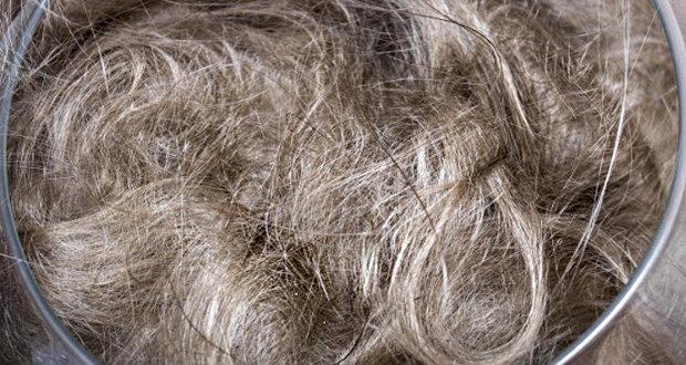 Фитостену на непрерывном базальтовом волокне создали в Пермском университете