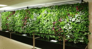 Heathrow Airport installed hanging garden on mineral wool
