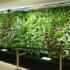 Heathrow Airport installed hanging garden on mineral wool