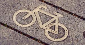 Для Куршской косы спроектируют 56-километровую велосипедную дорожку